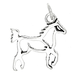 Sterling Silver Double Sided Outline Horse Body Frame Charm