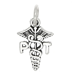 Sterling Silver One Sided Physical Therapist Caduceus Charm