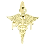 14Kt Yellow Gold Polished Physical Therapist Medical Caduceus Charm Pendant