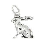 Sterling Silver Double Sided Long Ear Rabbit Charm