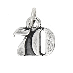 Sterling Silver Number 70 Years Seventy Charm Pendant